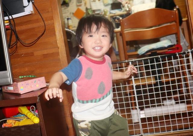 IMG_4716kai.JPG